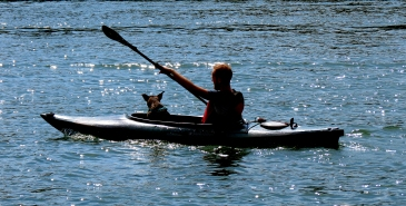 Sunday morning kayaker with his dog buddy.